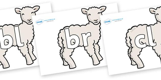 Initial Letter Blends on Lambs - Initial Letters, initial letter, letter blend, letter blends, consonant, consonants, digraph, trigraph, literacy, alphabet, letters, foundation stage literacy