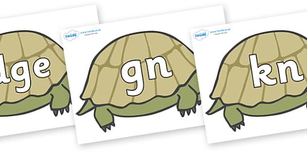 Silent Letters on Tortoises - Silent Letters, silent letter, letter blend, consonant, consonants, digraph, trigraph, A-Z letters, literacy, alphabet, letters, alternative sounds