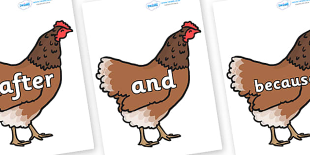 Connectives on Hens - Connectives, VCOP, connective resources, connectives display words, connective displays