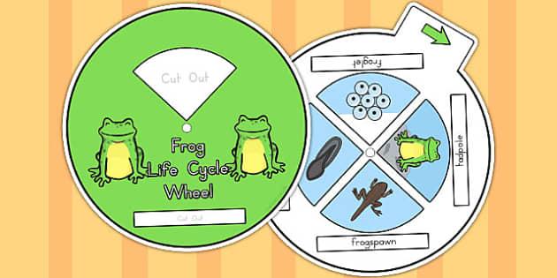 Frog Life Cycle Spin Wheel - life cycles, visual aids, lifecycles