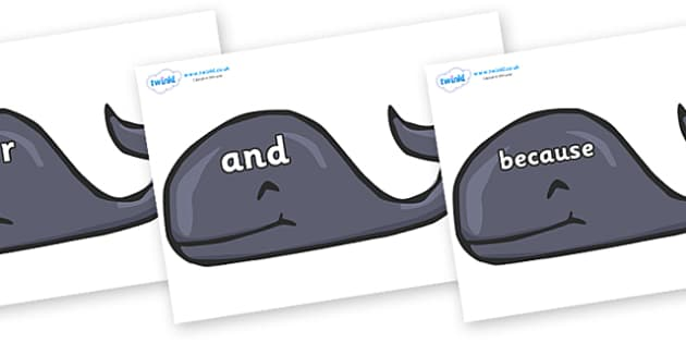 Connectives on Whales - Connectives, VCOP, connective resources, connectives display words, connective displays