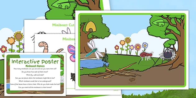Minibeast Home Interactive Poster and Prompt Card Pack - EYFS creepy crawlies, spider, ant, caterpillar, bee, worm ,butterfly, dragonfly, woodlouse