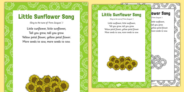 Little Sunflower Song
