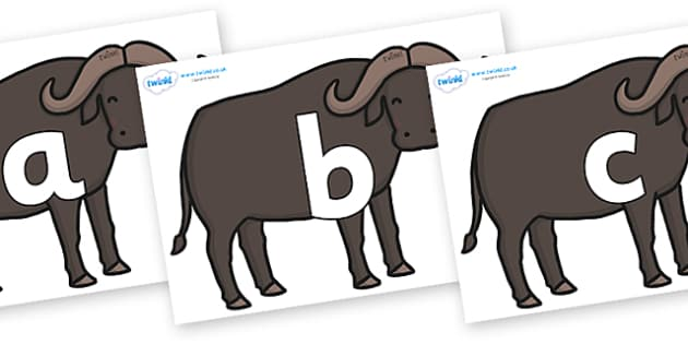 Phoneme Set on Buffalos - Phoneme set, phonemes, phoneme, Letters and Sounds, DfES, display, Phase 1, Phase 2, Phase 3, Phase 5, Foundation, Literacy