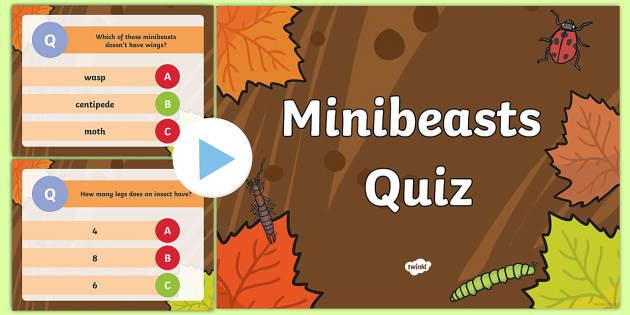 Minibeast Quiz PowerPoint - minibeasts, quiz, minibeast games