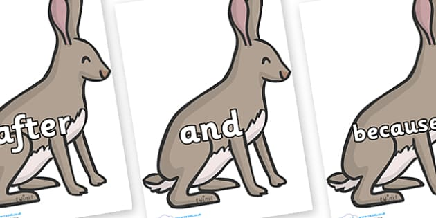 Connectives on Hares - Connectives, VCOP, connective resources, connectives display words, connective displays