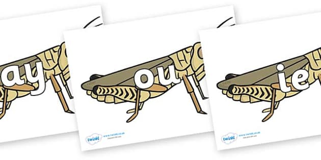 Phase 5 Phonemes on Grasshoppers - Phonemes, phoneme, Phase 5, Phase five, Foundation, Literacy, Letters and Sounds, DfES, display