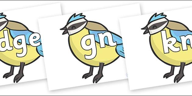 Silent Letters on Birds - Silent Letters, silent letter, letter blend, consonant, consonants, digraph, trigraph, A-Z letters, literacy, alphabet, letters, alternative sounds