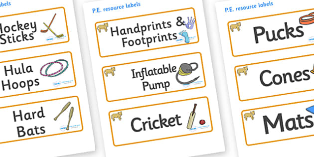 Lion Cub Themed Editable PE Resource Labels - Themed PE label, PE equipment, PE, physical education, PE cupboard, PE, physical development, quoits, cones, bats, balls, Resource Label, Editable Labels, KS1 Labels, Foundation Labels, Foundation Stage L