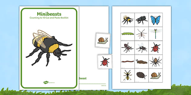 Minibeast Counting to 10 Cut and Paste Booklet - count, cutting