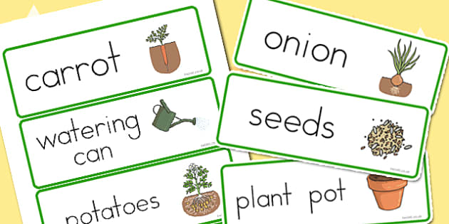 Grow Your Own Vegetables Word Cards - australia, vegetable, cards