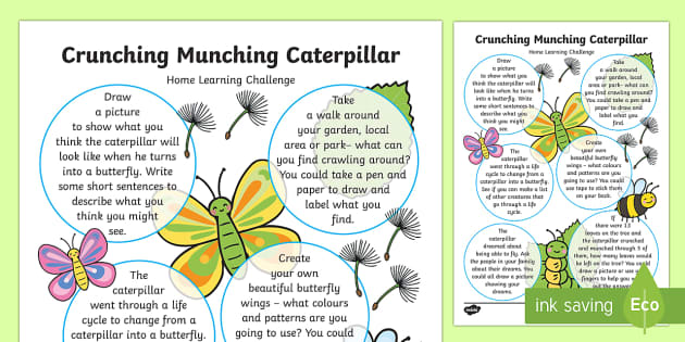 EYFS Home Learning Challenge Sheet Reception FS2 - The Crunching Munching Caterpillar, Sheridan Cain, life cycle of a butterfly,