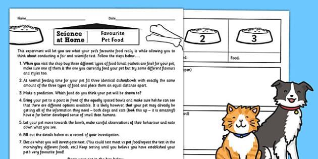 Favourite Pet Food Test Activity Sheet - activity, pet, food, worksheet