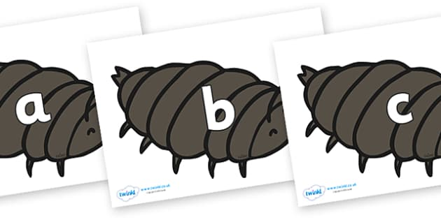 Phase 2 Phonemes on Woodlice - Phonemes, phoneme, Phase 2, Phase two, Foundation, Literacy, Letters and Sounds, DfES, display