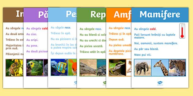 Grupele de animale - Planșe