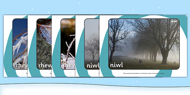 Winter Display Photographs Welsh Translation - winter, display