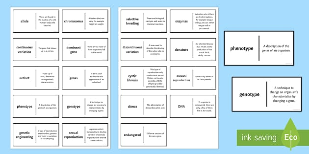 Genetics and DNA Patience Glossary Activity - Glossary, genes, chromosomes, DNA, allele, extinct, endangered, genotype, phenotype