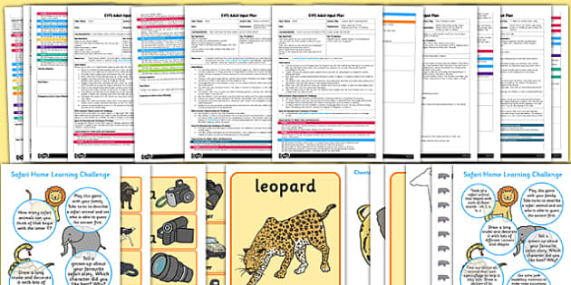EYFS Safari Themed Adult Input Planning and Resource Pack - safari, adult