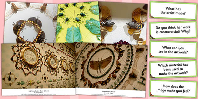 Looking at Pattern Photopack and Prompt Questions Jennifer Angus