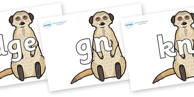Silent Letters on Meerkats - Silent Letters, silent letter, letter blend, consonant, consonants, digraph, trigraph, A-Z letters, literacy, alphabet, letters, alternative sounds