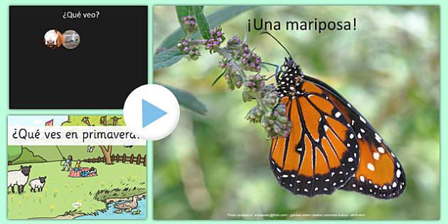 Powerpoint ¿Qué ves en primavera? - presentación, PowerPoint, vocabulario, primavera