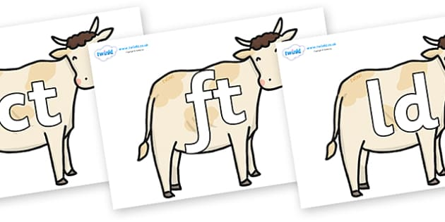 Final Letter Blends on Cows - Final Letters, final letter, letter blend, letter blends, consonant, consonants, digraph, trigraph, literacy, alphabet, letters, foundation stage literacy