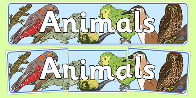 Animals Display Banner New Zealand - nz, animals, display, classroom, pets, zoo, creatures