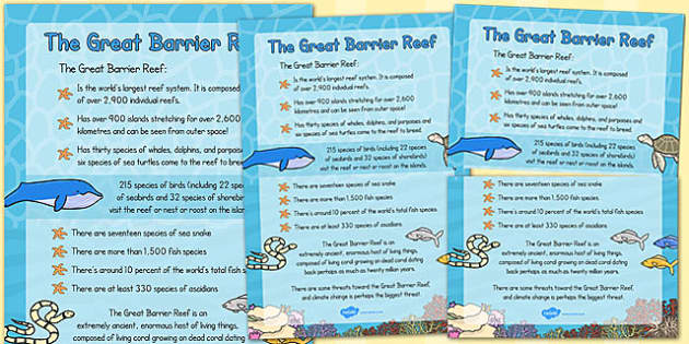 Great Barrier Reef Large Information Poster - australia, barrier