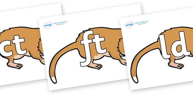 Final Letter Blends on Hamsters - Final Letters, final letter, letter blend, letter blends, consonant, consonants, digraph, trigraph, literacy, alphabet, letters, foundation stage literacy