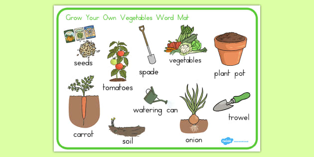 Grow Your Own Vegetables Word Mat - vegetable, food, healthy