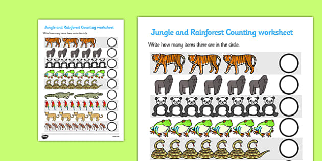 My Counting Worksheet (Jungle & Rainforest) - Counting worksheet, Jungle, Rainforest, counting, activity, how many, foundation numeracy, counting on, counting back, vines, snake, forest, ecosystem, rain, humid, parrot, monkey, gorilla