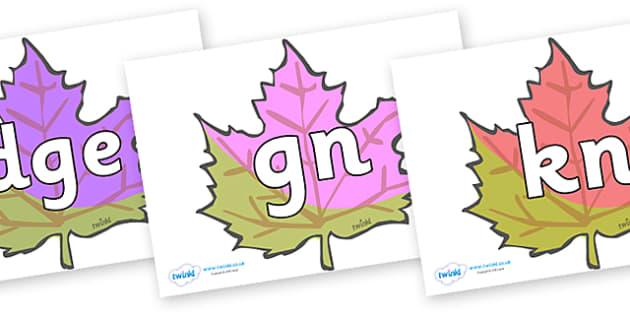 Silent Letters on Autumn Leaves - Silent Letters, silent letter, letter blend, consonant, consonants, digraph, trigraph, A-Z letters, literacy, alphabet, letters, alternative sounds