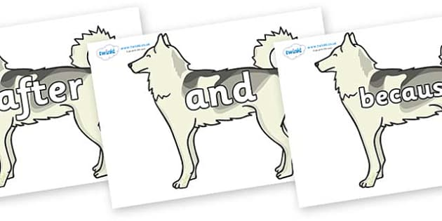 Connectives on Huskies - Connectives, VCOP, connective resources, connectives display words, connective displays