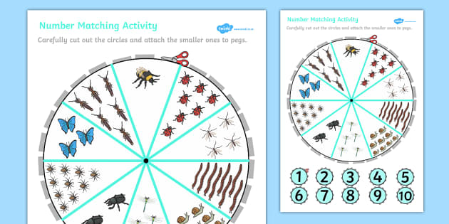 Number Matching Pegs Activity Minibeasts - minibeasts, match
