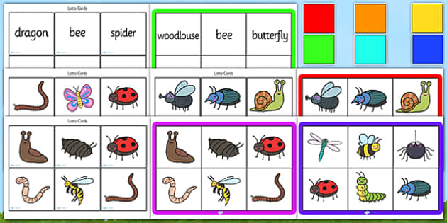 Minibeast Bingo Lotto Game Pack - minibeasts, minibeast bingo, minibeast lotto, minibeast bingo game, minibeast bingo activity, minibeast bingo cards