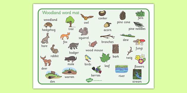 Woodland Word Mat - woodland, trees, word mat, mat, writing aid, words, writing aid, woods, forest, birds, leaf, fox, deere, bark, fern