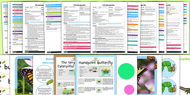 EYFS Life Cycle of a Butterfly Adult Input Planning and Resource Pack - EYFS, early years planning, minibeasts