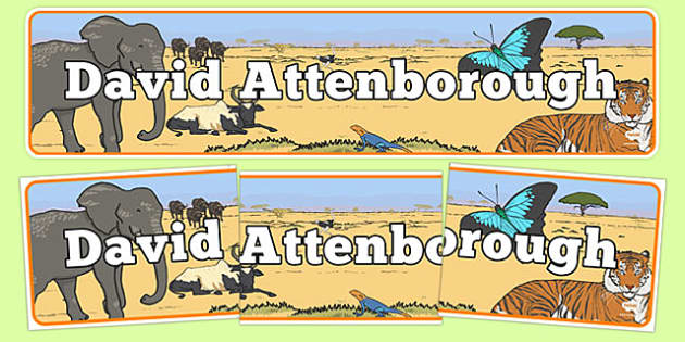 David Attenborough Display Banner - david attenborough, display banner, display, banner