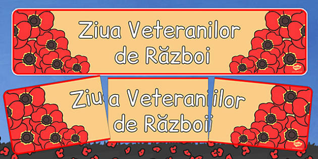 Banner, Ziua Veteranilor de Razboi  , Romanian
