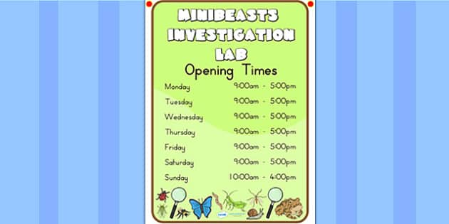 Minibeasts Investigation Lab Opening Times - role play, props