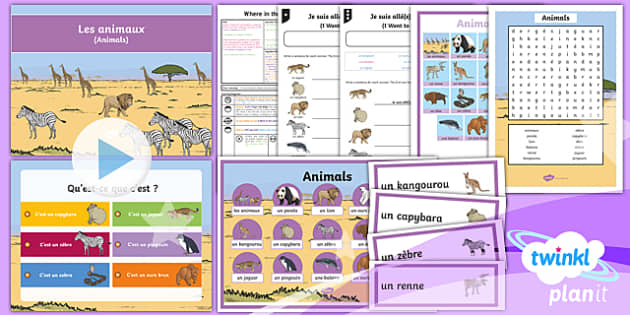 PlanIt - French Year 4 - Where in the World? Lesson Pack - french, languages, grammar, animals, zoo