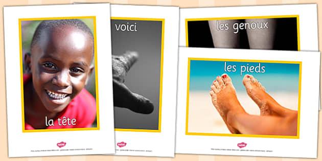French My Body Display Photos - french, display, photos, body