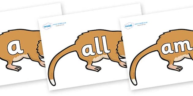 Foundation Stage 2 Keywords on Hamsters - FS2, CLL, keywords, Communication language and literacy,  Display, Key words, high frequency words, foundation stage literacy, DfES Letters and Sounds, Letters and Sounds, spelling