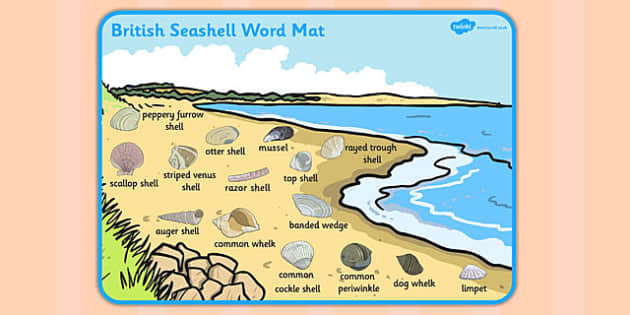 British Seashell Scene Word Mat - british, seashell, word mat