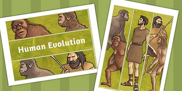 Human Evolution Display Borders - human, evolution, display