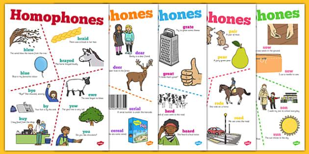 Homophones Posters - homophones, posters, display, display posters