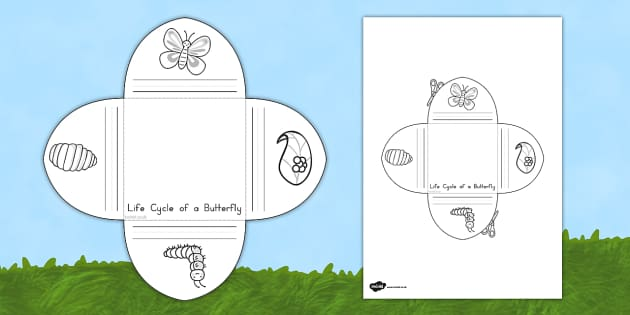 Butterfly Life Cycle Interactive Visual Aid - australia, aid