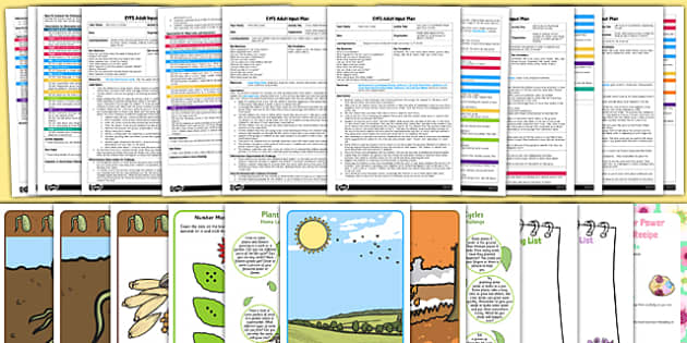 EYFS Plant Life Cycles Adult Input Planning and Resource Pack - EYFS, early years planning, adult led, sunflower life cycle, bean life cycle, cress life cycle