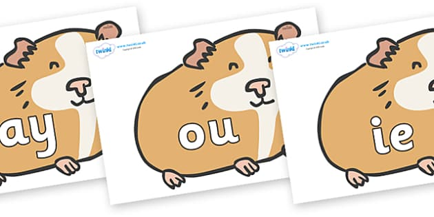Phase 5 Phonemes on Guinea Pigs - Phonemes, phoneme, Phase 5, Phase five, Foundation, Literacy, Letters and Sounds, DfES, display