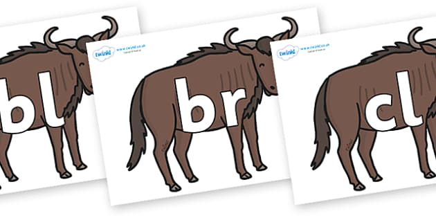 Initial Letter Blends on Wildebeests - Initial Letters, initial letter, letter blend, letter blends, consonant, consonants, digraph, trigraph, literacy, alphabet, letters, foundation stage literacy